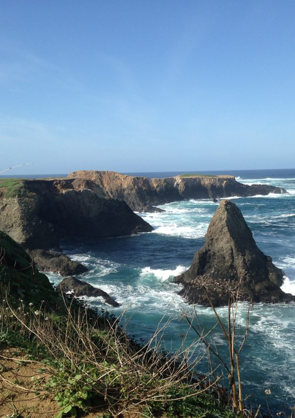 Mendocino, California: our Wine Country Honeymoon