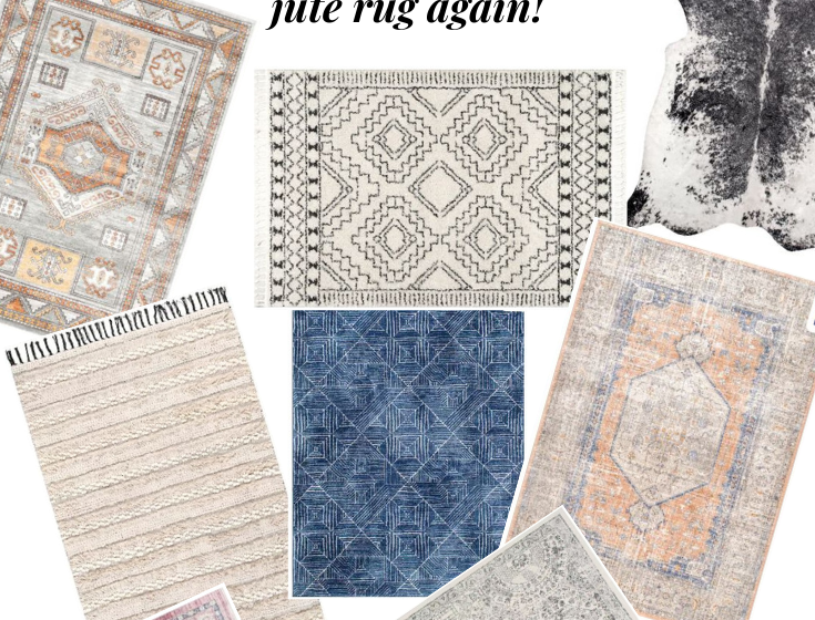 10 Affordable + Pretty Living Room Rugs
