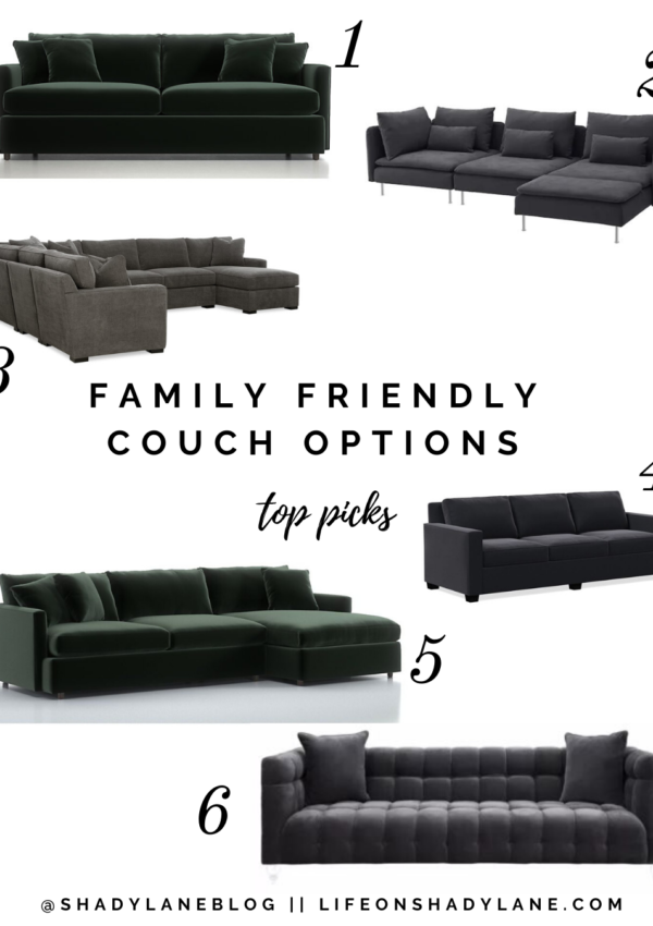 The Best Family Friendly Couch Options