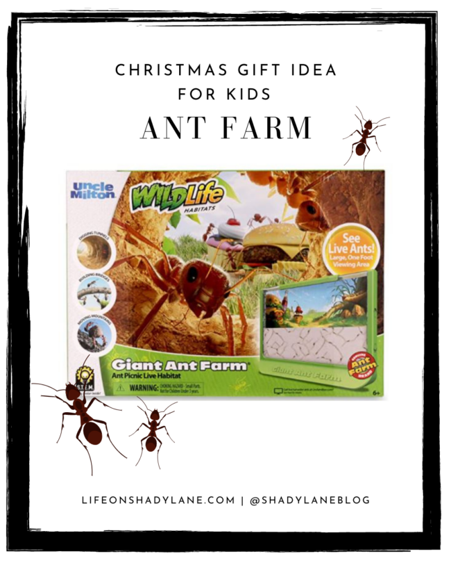 Christmas gift ideas for kids - an ant farm! I had one of these as a kid and LOVED it. | A roundup of all of the best deals for Black Friday 2020 ! Black Friday deals and Christmas gift ideas | Kansas City life, home, and style